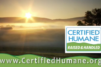 Certified Humane Video